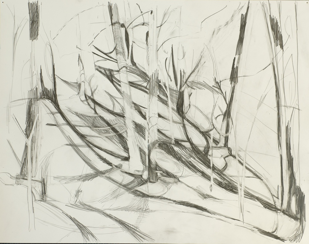 Deigaard_drawing_studies  003