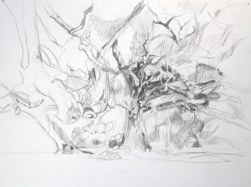 Deigaard_drawing_studies  014